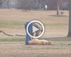 Captaron a este hombre hacer algo tan inesperado con un perro. ¡Espera a verlo!