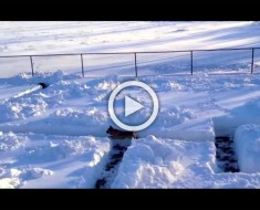 Construyeron un laberinto de nieve en su patio. Cuando su perro lo vio hizo la cosa más divertida