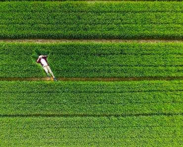 Las mejores fotografías hechas desde drones de 2015