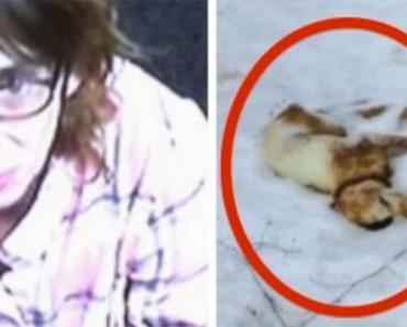Dejó a su cachorro fuera durante el día más frío de la temporada de invierno