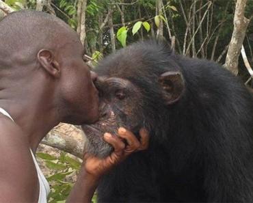 Este hombre se niega a abandonar a este chimpancé, a pesar de que todo el mundo lo ha hecho