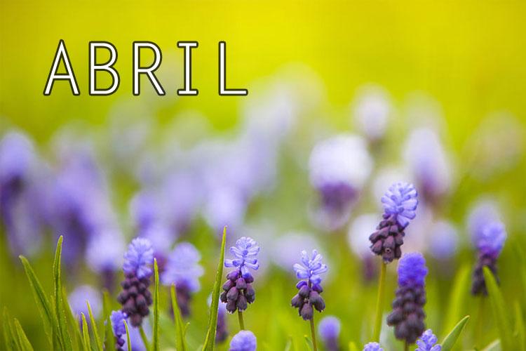 Tu mes de nacimiento revela mucho acerca de tu personalidad. ¿Qué dice tu mes de ti?