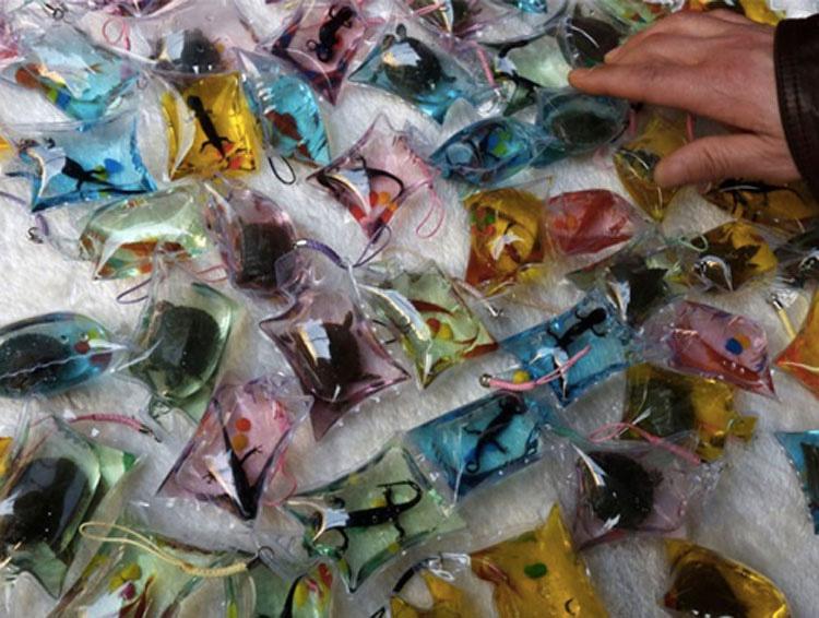 Estos llaveros de plástico contienen ANIMALES VIVOS. ¡Atroz!