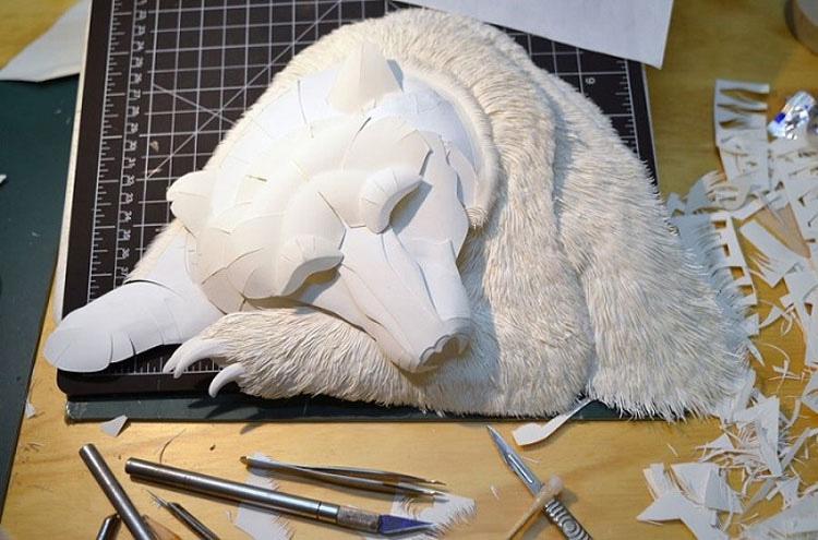 Esto parece un oso polar durmiendo, pero mira de nuevo... ¡INCREÍBLE!