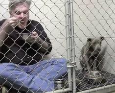 Entra dentro de una jaula con un pitbull maltratado. Cuando vi la razón me quedé impresionando