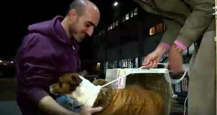 Esta mujer no puede decidir qué perros adoptar... Así que compra el refugio COMPLETO