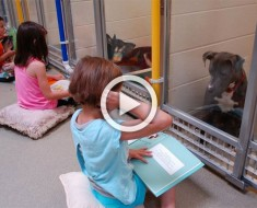 Algo verdaderamente hermoso está sucediendo en este refugio para animales