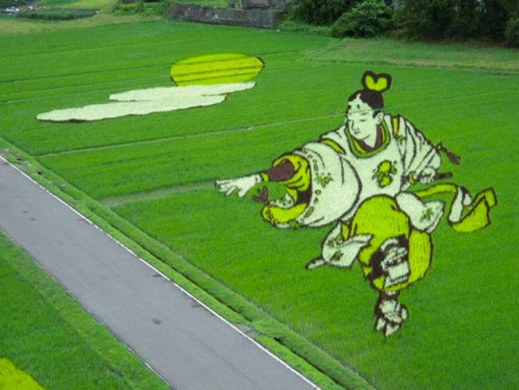 Algo espectacular sucede cuando estos campos de arroz, aparentemente normales, crecen
