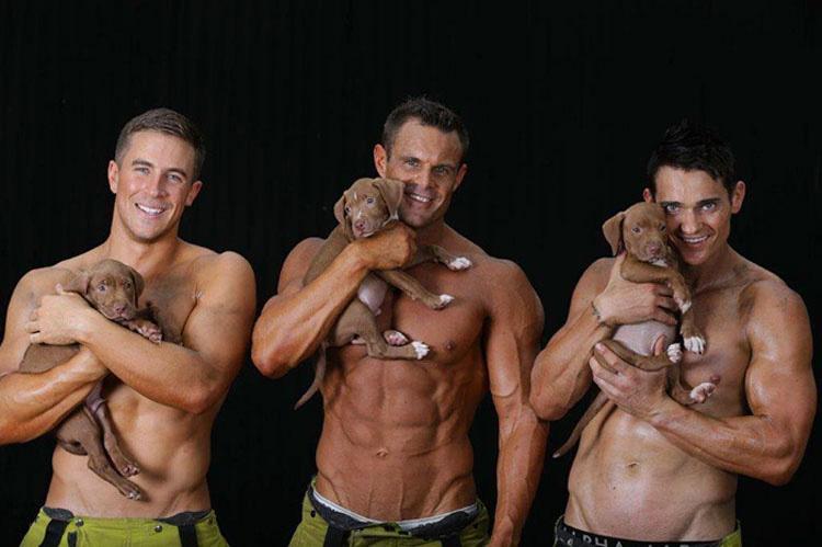 Estos bomberos posan con cachorros rescatados para ayudarles a que sean adoptados