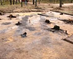 Hitler pensó que esto nunca sería encontrado, pero arqueólogos han desenterrado un oscuro secreto