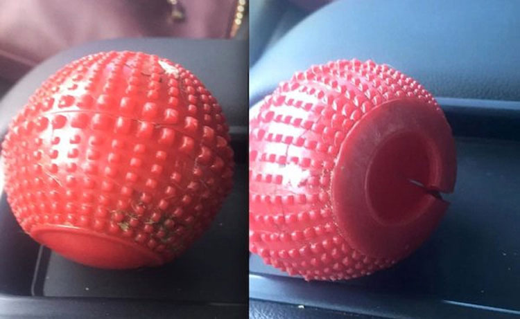 Si tienes este juguete para perros en casa, deshazte de él INMEDIATAMENTE