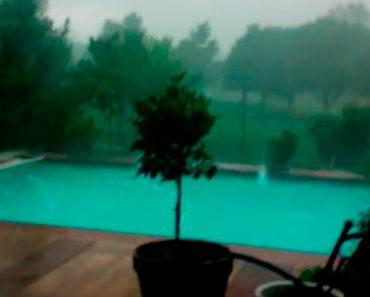 Comenzó a grabar la piscina. Segundos más tarde sucede ESTO...