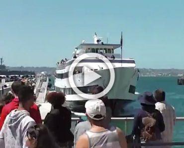 Aplaudían con entusiasmo cuando el barco llegaba... pero luego se dieron cuenta de que algo iba mal