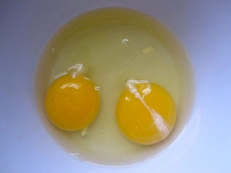 Esta cosa viscosa en las yemas de los huevos es más importante de lo que piensas