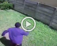 Una cámara oculta en un patio capturó a un ladrón huyendo. Ahora mira de que huía... ¡Hilarante!