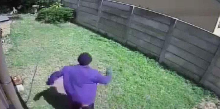 Una cámara oculta en un patio capturó a un ladrón huyendo. Ahora mira de que huía... ¡Hilarante! 1