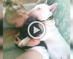 """Papá pone a sus """"bebés"""" para que duerman una siesta. Ahora mira lo que hace la pequeña..."""