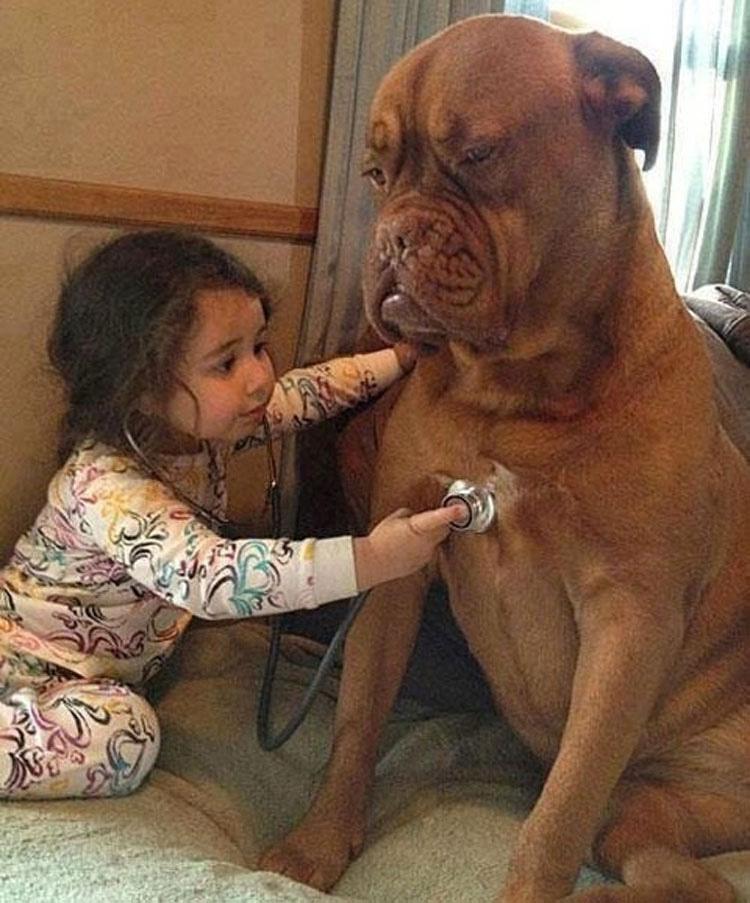 20 fotos que prueban que los niños necesitan mascota. Las dos últimas son las mejores