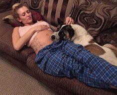Este perro no deja el vientre de su dueña embarazada. Después se enteran de la razón...