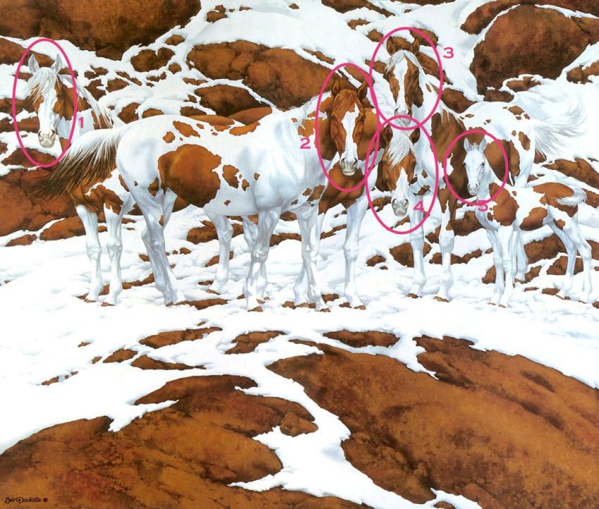 ¿Cuántos caballos puedes ver en esta preciosa escena de nieve? No es tan fácil...