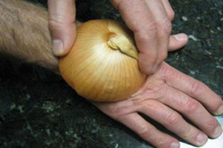 Se frotó cebolla cruda en la mano por una brillante razón. ¡No tenía idea de que esto realmente funciona!