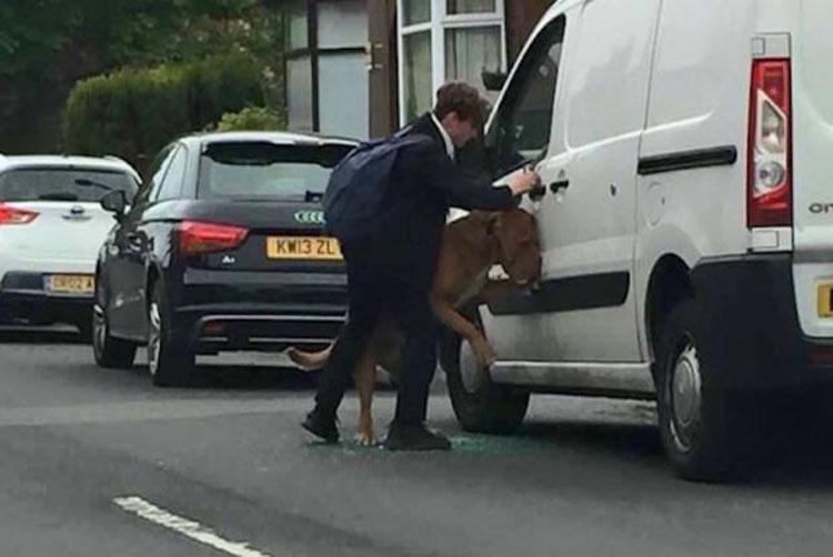 Dejó a su perro en el coche durante unos minutos. Podría haber muerto de no ser por esto... 1