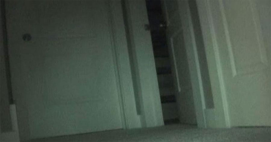 Su hija decía que los juguetes desaparecían por la noche. Pusieron una cámara oculta y capturó ESTO