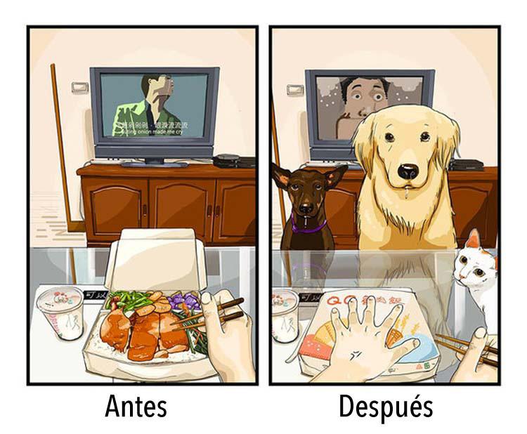8 dibujos que nos dicen cómo es la vida antes y después de tener un perro