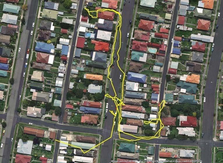 Ponen rastreadores GPS en sus gatos y dejan que anden libres. Aquí es donde fueron...