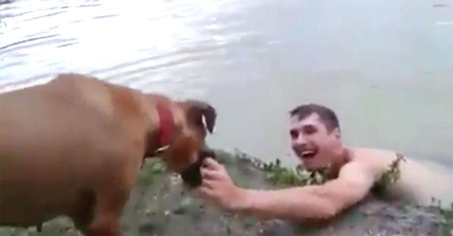 Este perro no deja la mano de su dueño. Cuando muestra la razón es... ¡INCREÍBLE! 1
