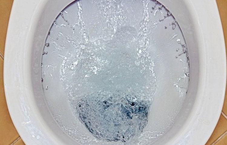 Por qué tienes que dejar de poner papel higiénico en los baños públicos inmediatamente