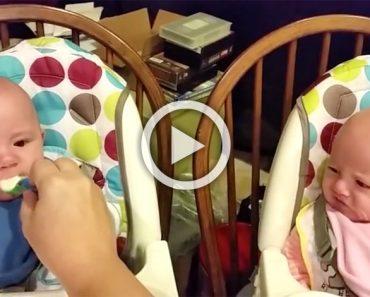 Esta alimentando a sus bebés gemelos. Ahora mira a la niña en rosa ... ¡ADORABLE!