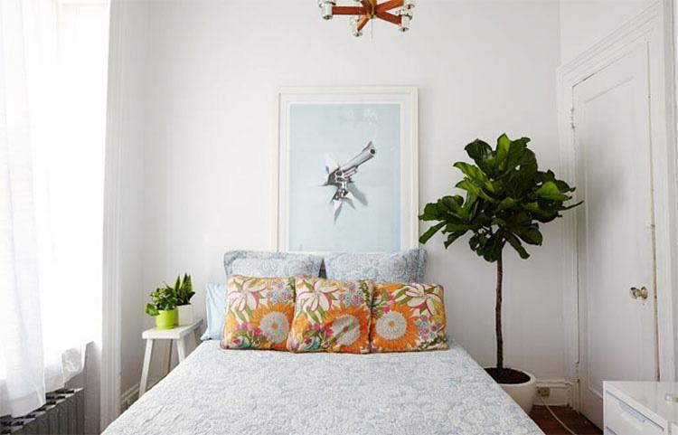 Pone plantas en su dormitorio, pero no por decoración. ¡La razón es verdaderamente genial!