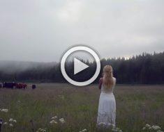 Empieza a cantar una antigua canción vikinga, ahora observa cómo responden las vacas
