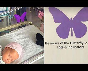 ¿Has visto estas mariposas púrpuras para bebés recién nacidos? Esto significan...