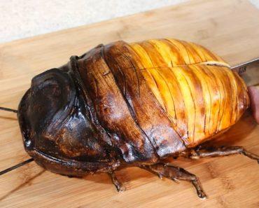 Corta en rebanadas una cucaracha gigante. Ahora mira su interior... ¡INCREÍBLE! 1