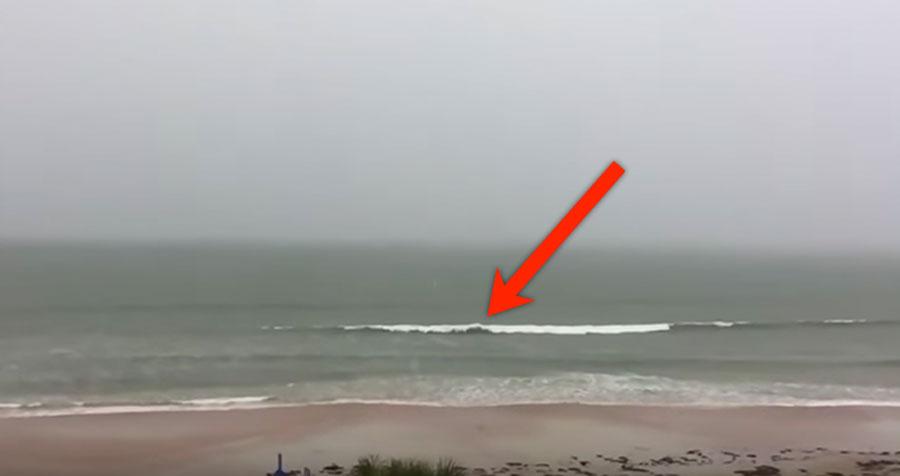 Escucha retumbar un sonido en la playa y apunta con su cámara. ¡Lo que captura es MARAVILLOSO!