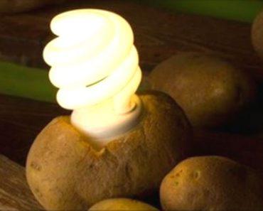 En caso de una emergencia, así puedes utilizar una patata para generar tu propia electricidad