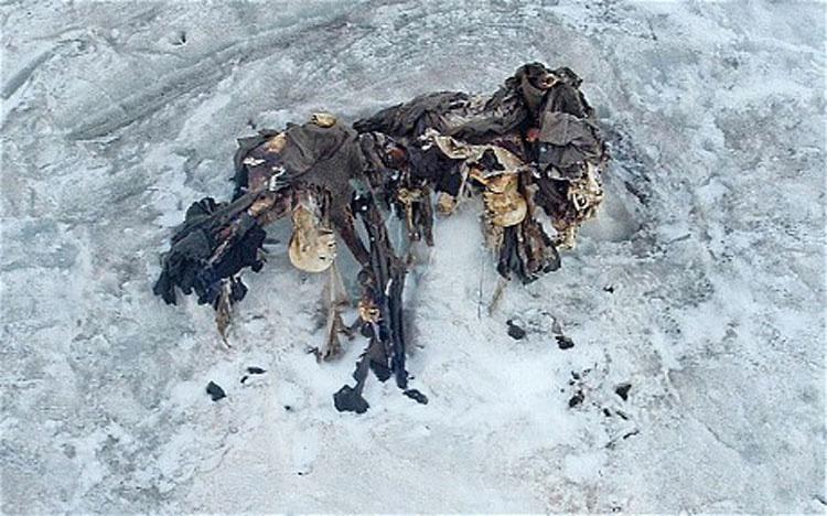 Estaban de excursión en un glaciar derretido, y lo que encontraron les hizo sentir escalofríos