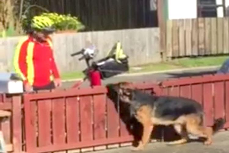 Pone una cámara oculta y captura al cartero haciendo esto a su 'peligroso' perro