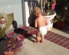 Bebés increíblemente lindos en el momento que ven sus propias sombras - y les ATERRORIZA