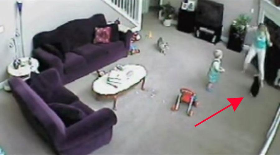 Observa cómo este gato protege a un niño contra una niñera que se comporta inadecuadamente