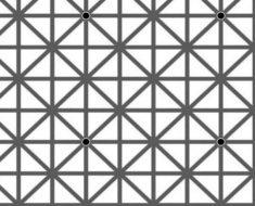 Sólo unas pocas personas pueden superar este test óptico de los puntos negros. ¿Puedes?