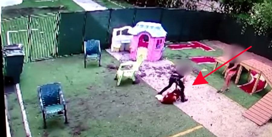 El perro de este vídeo tuvo que ser sacrificado tras el maltrato por parte de un empleado 1