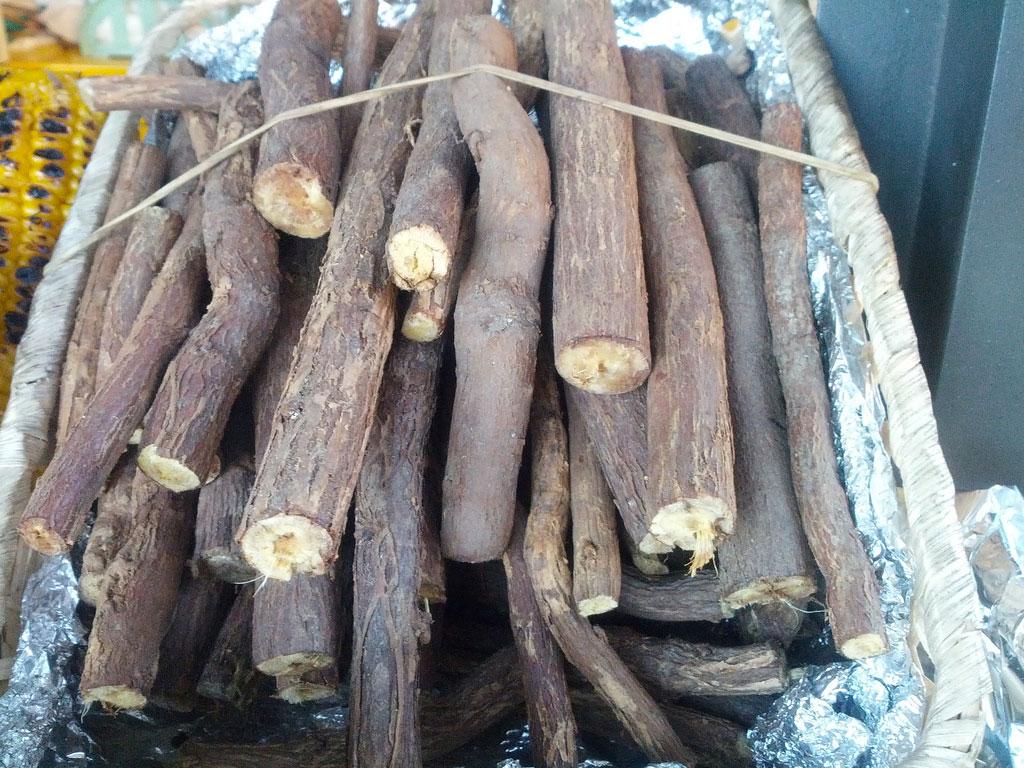 Masticar esta raíz elimina la placa, elimina el mal olor y previene las caries