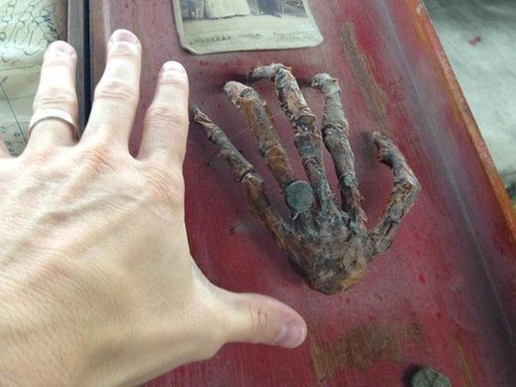 En una misteriosa caja del ático del abuelo descubrieron un secreto de 200 años de antigüedad