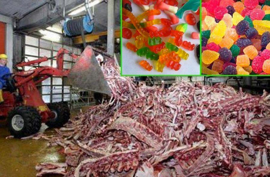 Después de ver cómo se hacen realmente las gominolas nunca las volverás a comer