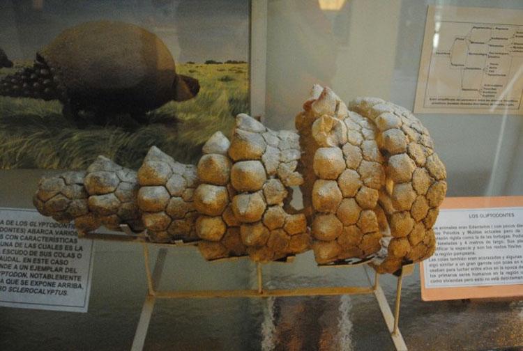 """Este granjero encontró un enorme """"huevo de dinosaurio"""", pero descubrió que era algo más raro"""