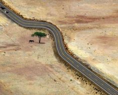 13 fotos que muestran las increíbles maneras en que la humanidad ha respetado la naturaleza