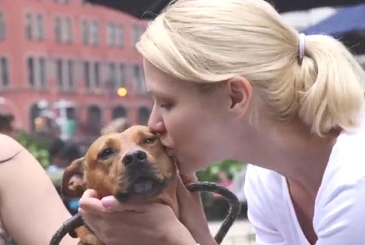 Los médicos ahora están instando a no dejar que tu perro te lama - Aquí está el por qué
